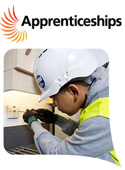 Apprenticeships & Technical Trainees